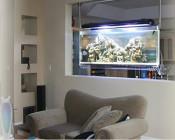 Spacearium - nowoczesne akwaria